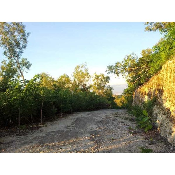 land for sale in bali island 05-2