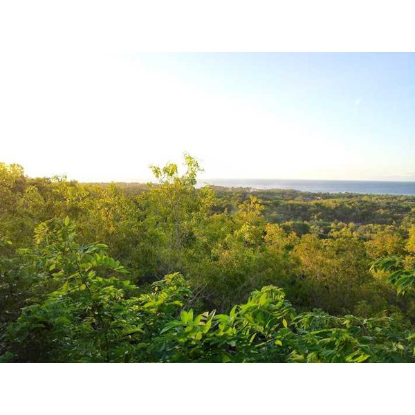 land for sale in bali island 05-1