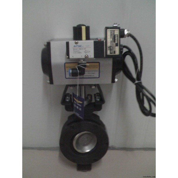 valtorque pneumatic double acting with butterfly valve-1