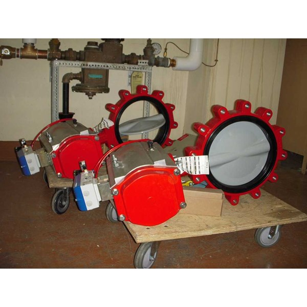 valtorque pneumatic double acting with butterfly valve-4