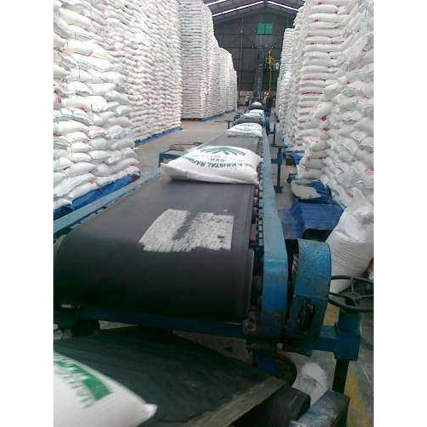 flate belt conveyor-2