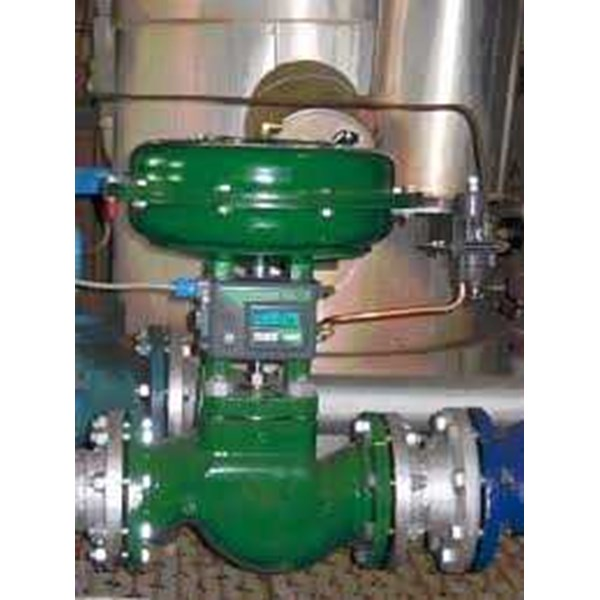 fisher control valves-2
