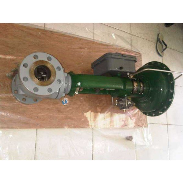 fisher control valves-3