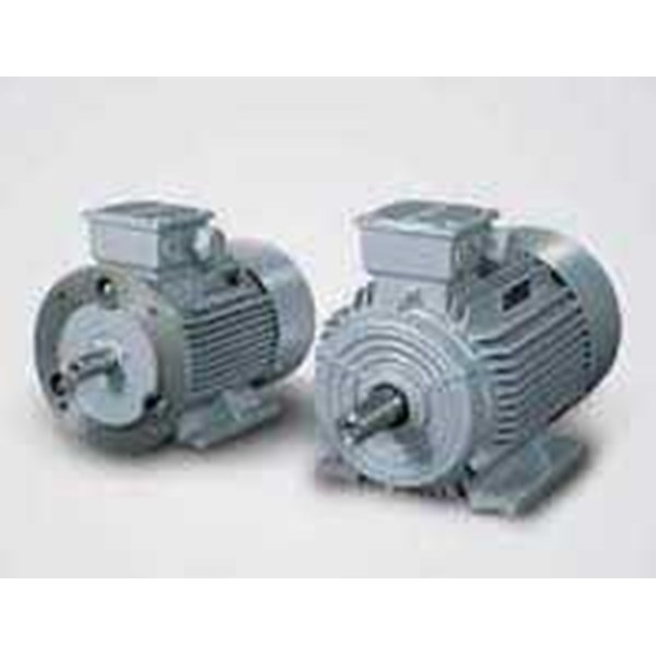 siemens basics of ac motors