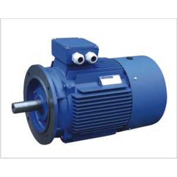 ac motor/induction motor (dinamo)-5