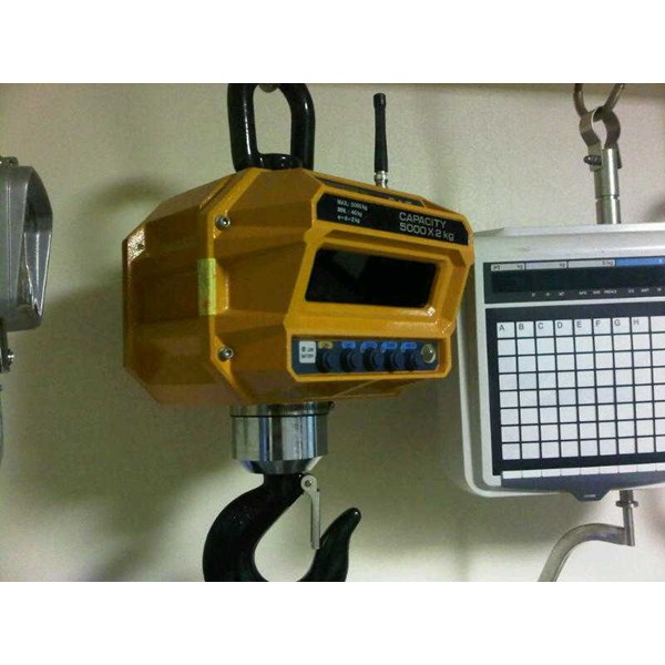 crane scale wireless display capacity up to 100 ton-2