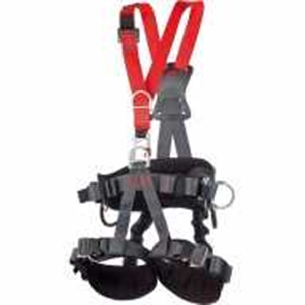 camp safety golden top plus harness