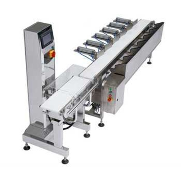 mesin grading & conveyor check weighing-1