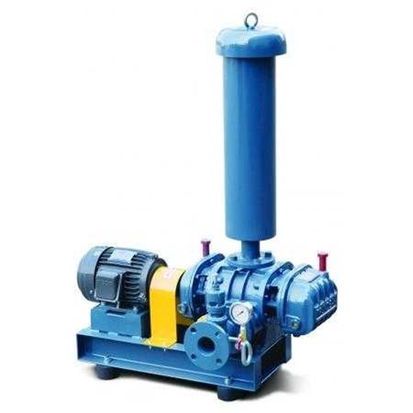 trundean roots blower - vertical roots blower - roots vacuum blower-2