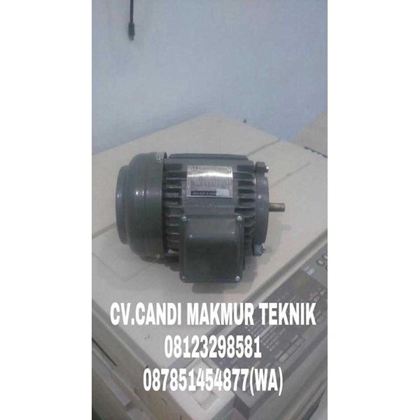teco electric elektro - induction motor 3 phase-2