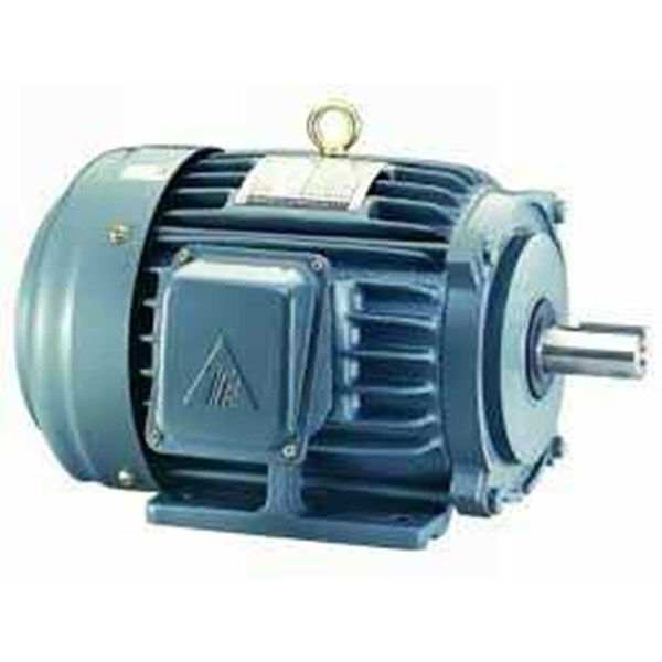 teco electric elektro - induction motor 3 phase-4