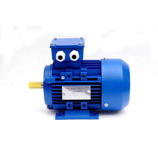 ac motor/induction motor (dinamo)