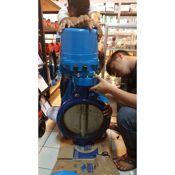 jual electric actuator neumax (holland)