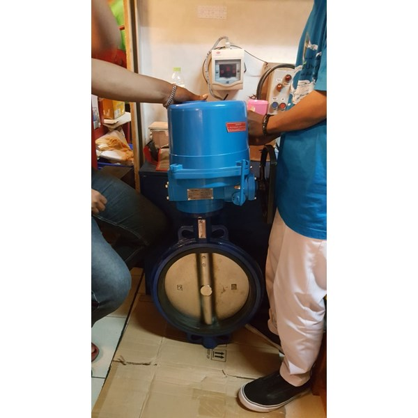 jual electric actuator neumax (holland)-5