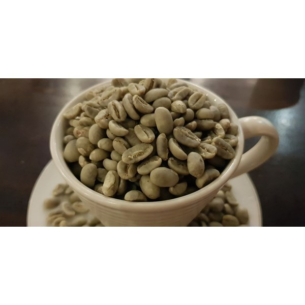 green beans arabica gayo specialty