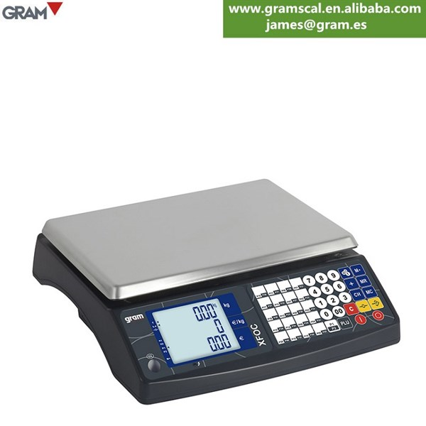 gram scal standard weighing scale-1