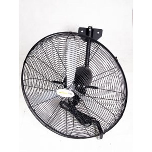 distributor wall fan-1