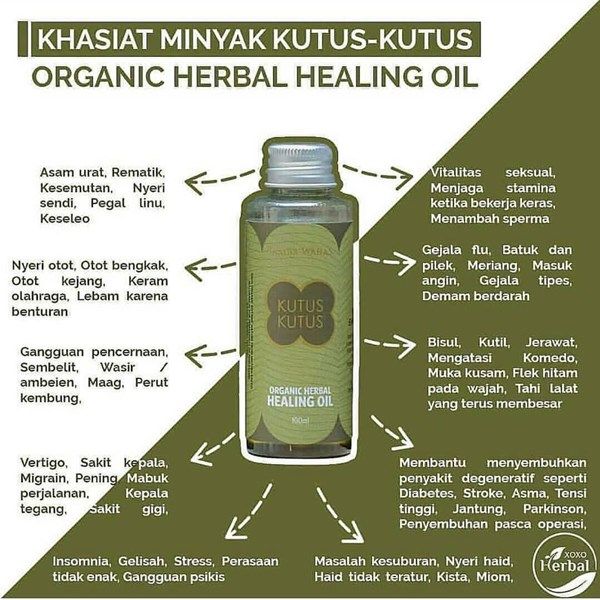 minyak herbal kutus-kutus original-3