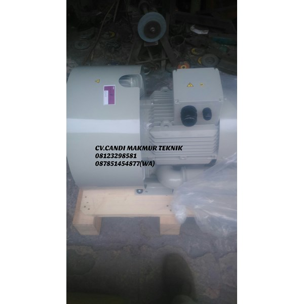 mapcato - ho hsing ring blower single stage / double stage-2