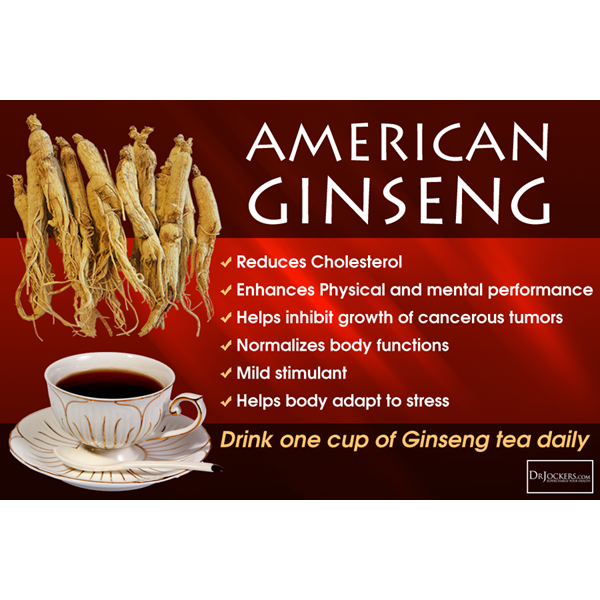 prince of peace american ginseng root tea with honey.-1