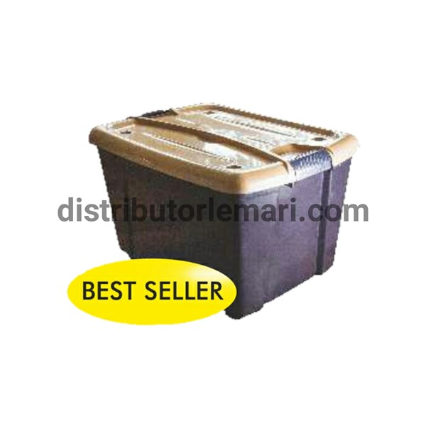 box container roxane 50 lt